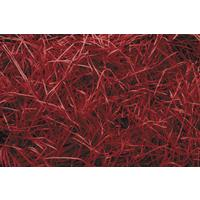 Photo EFF1180 : Frisure fine papier rouge 024