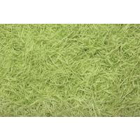Photo EFZ1103 : Frisure soie vert anis N6