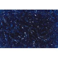 Photo EFC1045 : Frisure cellophane Bleu 2S